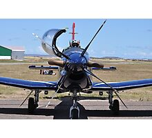 Silver Falcons Photographic Print