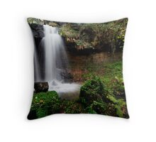 Scaling Beck Waterfall Throw Pillow