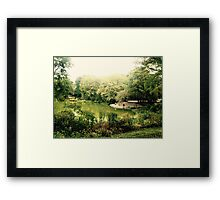 NYC Swamp with Photo shoot Framed Print