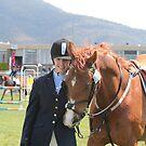 My Pony Calendar 2012 - Royal Hobart Show 2011 by PaulWJewell