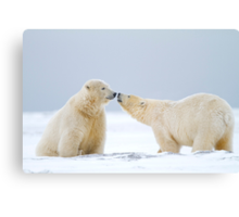 Prelude To A Kiss Canvas Print