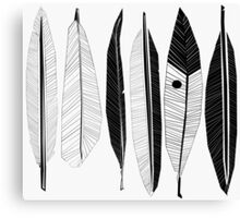 Black and White Feathers Print Canvas Print