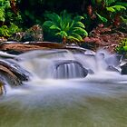 """""""Cascading At Aire Crossing"""" by Phil Thomson IPA"""