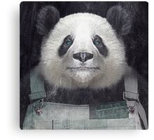 Billy Bob Panda Canvas Print