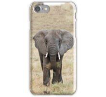 Serengeti Elephant iPhone cover iPhone Case/Skin