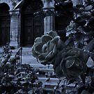 Pleurosis At The Cathedral by Miku Jules Boris Smeets