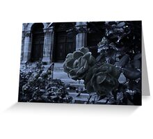 Pleurosis At The Cathedral Greeting Card