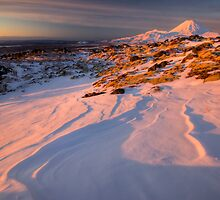 Mt Ngauruhoe not in Cloud  by Michael Treloar
