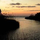 Sunset Over the Sound by Robin Lee