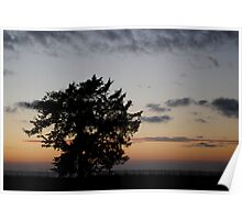 Sunset in Salvo Poster