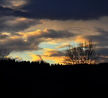 Duvall Sunset by richchop