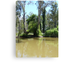 On the Murray: Barmah, Australia Canvas Print