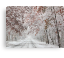Autumn Wonderland Canvas Print