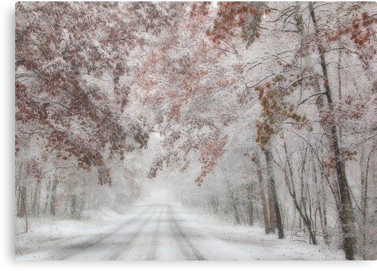 Autumn Wonderland by Lori Deiter