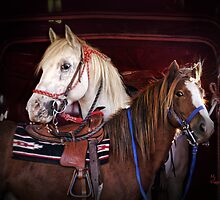 """Skipper & Mr. Pony"" by Melinda Stewart Page"
