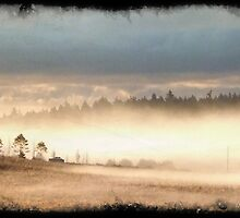 Fog Banked by mzjohansen