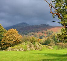 Ambleside Cumbria by Tom Curtis