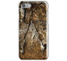 Rusty Crusty iPhone Case/Skin