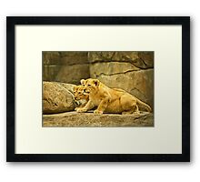 African Cats -1   / Together We Will Make The Kill Framed Print
