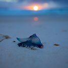 5:14am Cheynes Beach- Albany Western Australia-30-10-2011 by Chris Paddick