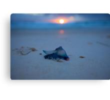 5:14am Cheynes Beach- Albany Western Australia-30-10-2011 Canvas Print