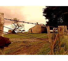 behind the barbwire Photographic Print
