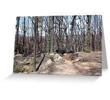 Post February 2009 Bushfires - west of Kinglake June09 Greeting Card