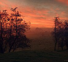 Endon Dawn by Aggpup