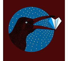 Magpie's Winter Heart Photographic Print