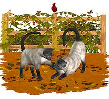 Play Time .. September Cats by LoneAngel