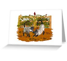 Play Time .. September Cats Greeting Card