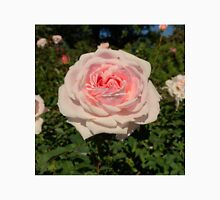 Rose Garden at the NY Botanical Gardens Unisex T-Shirt
