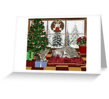 Cat and Kittens .. December Cats Greeting Card