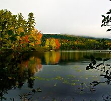 Fogg Morning in the Adirondacks by BigD