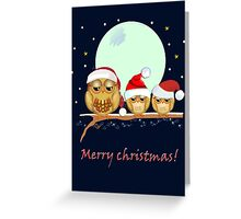 Cute Owl family with Santa hats on a branch + text Greeting Card