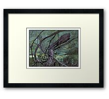 Fallen branch Framed Print