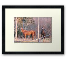"Sky and Fancy... ""Pose,She's Got The Camera Out"" Framed Print"