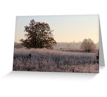 First frost, and tree in autumn colors Greeting Card