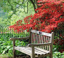 Have A Seat by Deborah Crew-Johnson