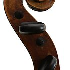 Violin Scroll by dury