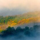 Autumn Mist, Cotswolds, England by Giles Clare