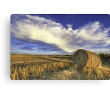 Bail on Field HDR Canvas Print