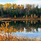 """""""  Autumn Reflections  """" by fortner"""