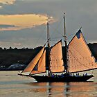 GOLDEN SAILS by Charles Dobbs Photography