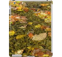 Water Color iPad Case/Skin