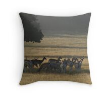 Dawn in Richmond Park, London Throw Pillow