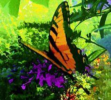 Butterfly by Artondra Hall