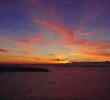 Seattle Sunset by Robin Nellist