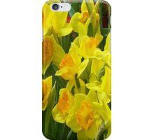 iPhone Case - Daffodils iPhone Case/Skin