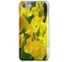 iPhone Case - Daffodils iPhone Case/Skin